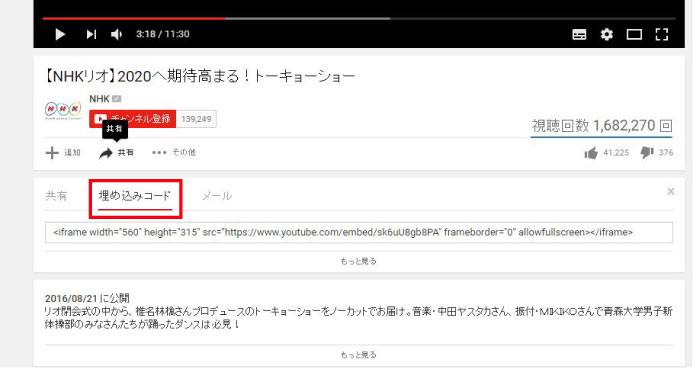 wp_youtube03